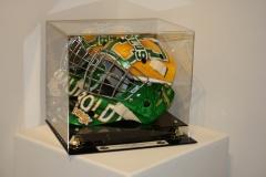 Custom Goalie Helmet